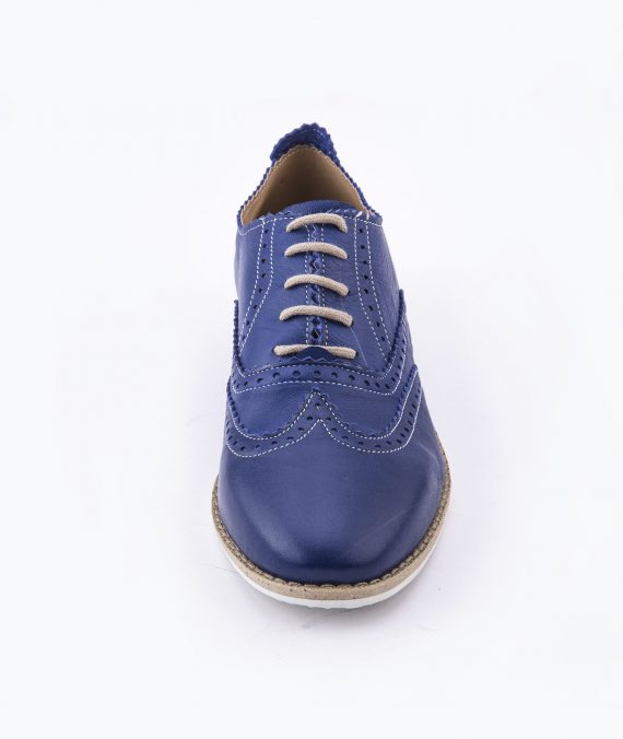 Shebrogues bluebird